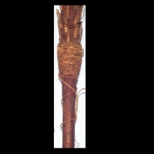 A New Hebrides spear with bone barbs and plain shaft.