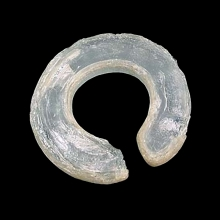 An ancient Vietnamese penannular glass ear ornament