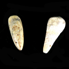 An pair of ancient Bactrian alabaster tear drop shaped beads
