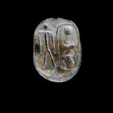 A steatite scarab,of Thutmose IV, New Kingdom