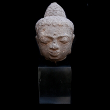 Central Java volcanic stone (andesite) head of Buddha